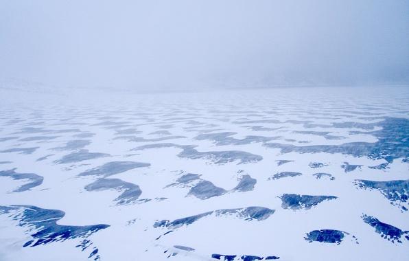 Picture ice, winter, Snow