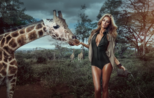 Picture chest, girl, trees, sexy, background, model, giraffe, blonde, legs, sexy, beauty, Veronika Klimovits, Miss Tuning …