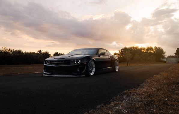 Picture Chevrolet, Muscle, Camaro, Car, Front, Black, Autumn, Matte, Road, Stance, ZL1