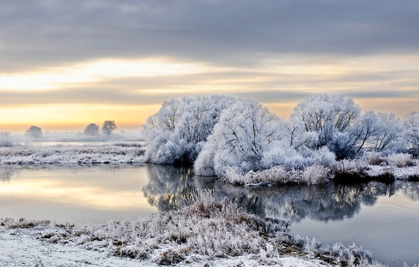 Picture winter, frost, snow, trees, river, Germany