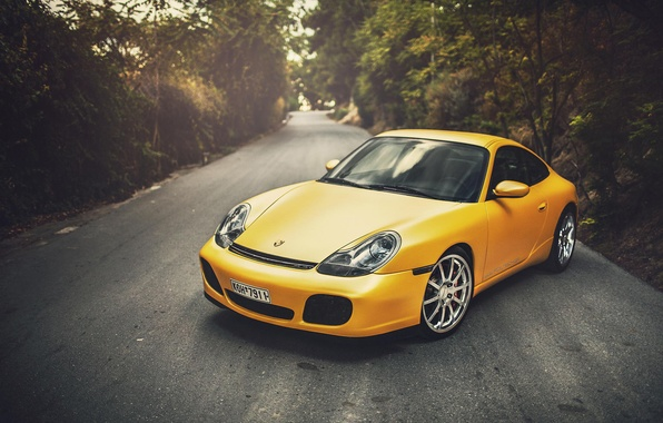 Picture Porsche, Porsche, Carrera, Yellow, 996, Wildness