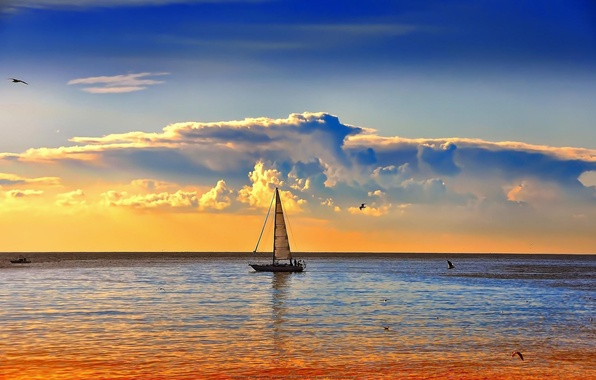 Picture SEA, HORIZON, The OCEAN, The SKY, CLOUDS, SAIL, YACHT, BIRDS, DAWN, MAST