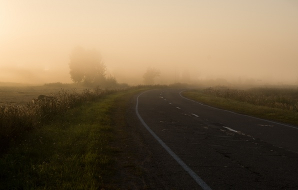 Picture road, field, nature, fog, morning