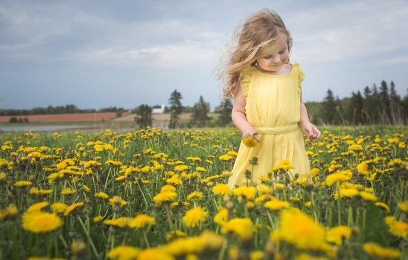 Picture flowers, nature, mood, meadow, girl, dandelions