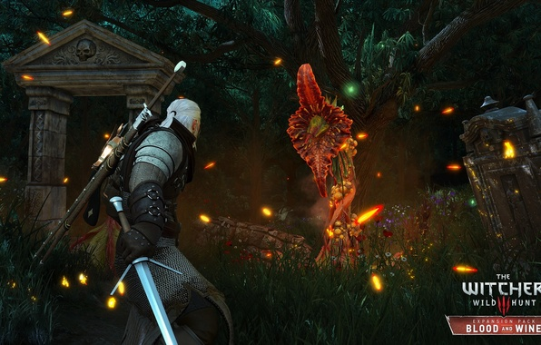 Picture game, DLC, RPG, CD Projekt RED, The Witcher 3: Wild Hunt, developer, Blood and Wine