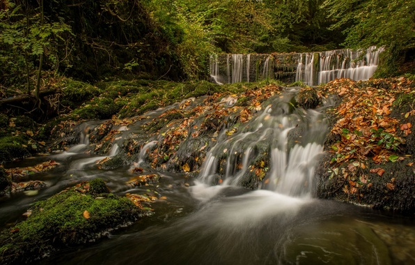 Picture autumn, forest, England, waterfall, cascade, England, The lake district, Lake District, Cumbria, Lake District