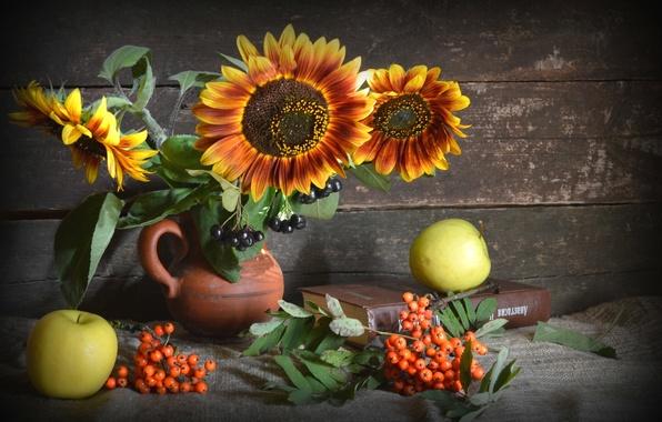 Picture sunflowers, apples, still life, Rowan, Aronia