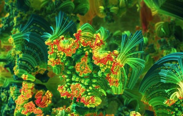 Picture sea, light, color, corals, the volume