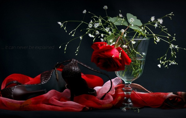 Picture flowers, rose, shoes, vase, shawl