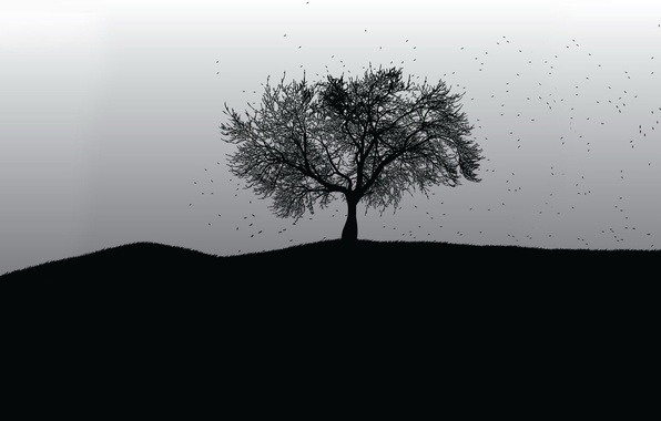 Picture tree, black and white, vector