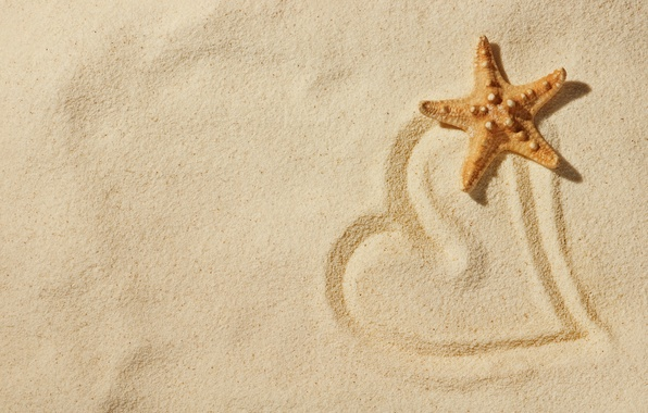 Picture sand, beach, love, nature, mood, heart, star, love, heart