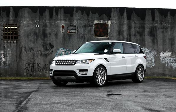 Picture SUV, Range Rover, Range Rover Sport, White