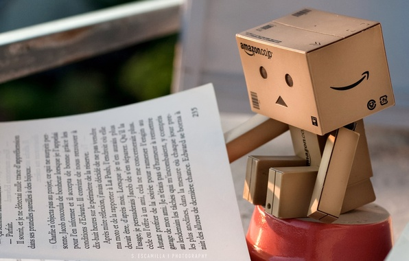 Picture danbo, owner, box