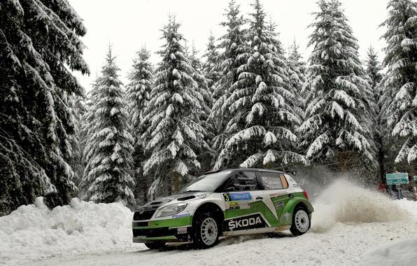 Picture Winter, Auto, Snow, Forest, Sport, WRC, Rally, Skoda, Fabia, Fabia, Skoda