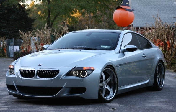 Picture trees, the building, bmw, BMW, silver, silver, drives, e63, daylight
