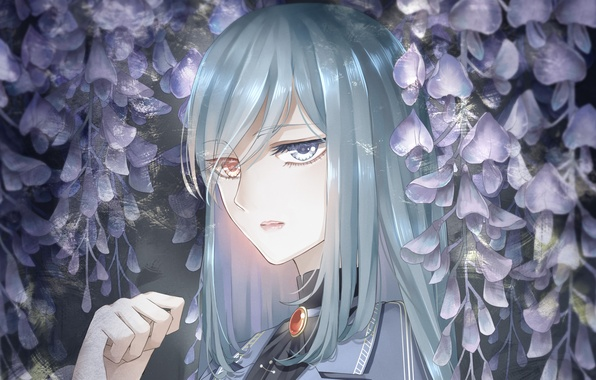 Picture flowers, Girl, different eyes, heterochromia, Wisteria, Wisteria