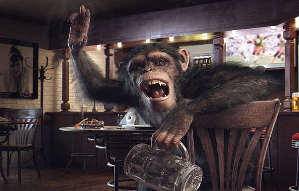 Picture glass, bar, ordering, monkey, table, butts