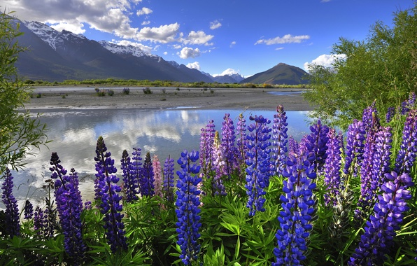 Picture clouds, mountains, lake, New Zealand, Lupin