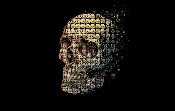 Picture style, background, skull, sake