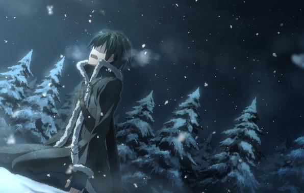 Picture winter, snow, night, nature, spruce, anime, art, guy, yuuki tatsuya, sword art online, kirigaya kazuto