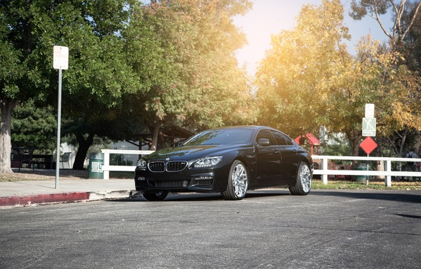 Picture BMW, BMW, 640i, F13, Vertini