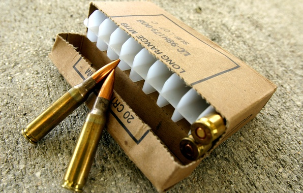 Picture ammunition, M1A rifle, caliber 7.62x51mm