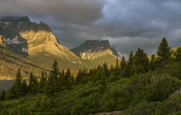 Picture forest, mountains, clouds, USA, Glacier National Park, Montana