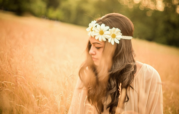 Picture summer, girl, mood, chamomile, meadow