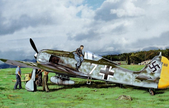 Picture war, art, painting, aviation, Don Greer, ww2, fw 190, german fighter
