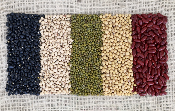 Picture colors, beans, variety