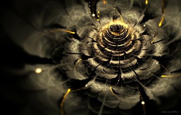 Picture flower, light, abstraction, Wallpaper, graphics, fractal, bokeh