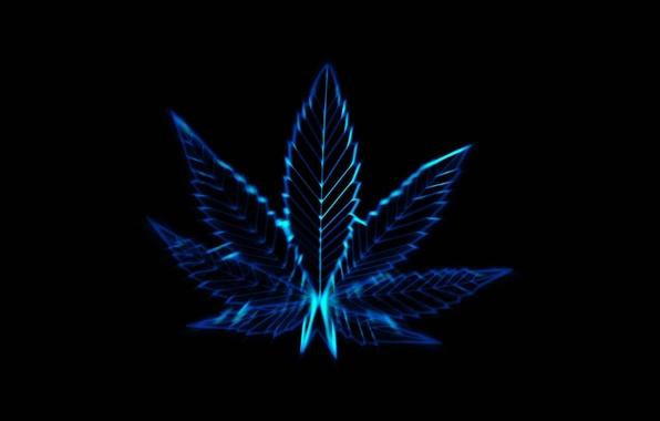 Picture life, lifestyle, marijuana