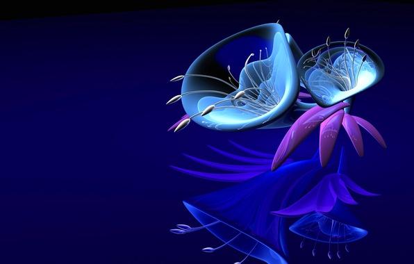 Picture flower, glass, fantasy, petals, plastic