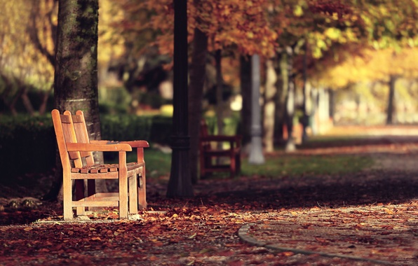Picture autumn, the city, street, bench