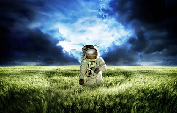 Picture grass, space, kosmonaft