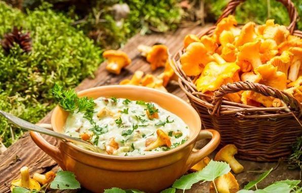 Picture mushrooms, food, Chanterelles mushrooms in cream