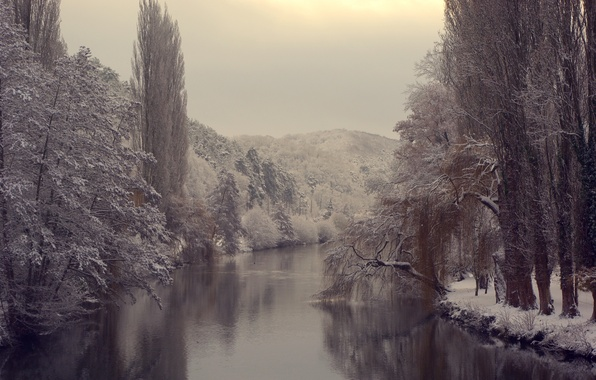 Picture cold, ice, winter, forest, water, snow, trees, nature, river, branch, pond