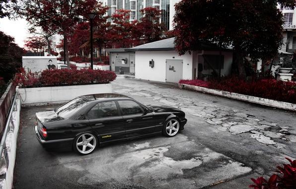 Picture machine, BMW, yard, Bmw, e34