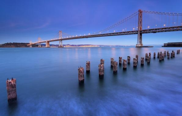 Picture the sky, landscape, bridge, city, the city, Strait, blue, shore, the evening, lighting, lights, CA, …