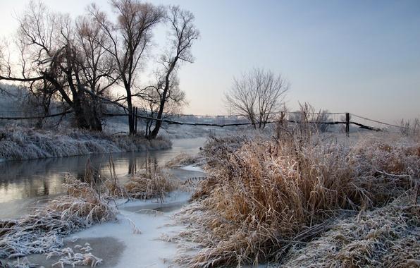 Picture frost, landscape, river, dawn