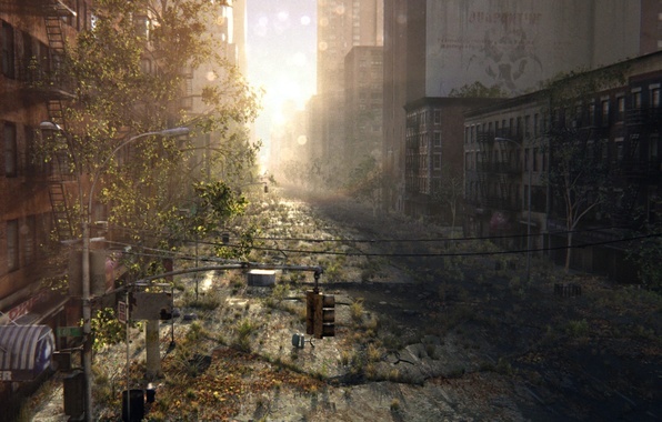 Picture the city, cracked, sunrise, thickets, street, art, ruins, postapokalipsis, abandonment, Josiah