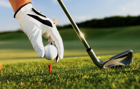 Picture grass, hand, the ball, stick, Golf, glove