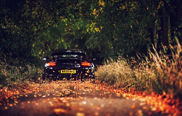 Picture road, foliage, Porsche, black, GT3