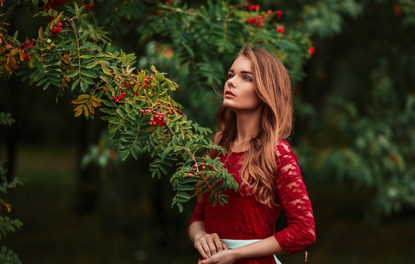 Picture look, girl, branches, face, Park, green, sweetheart, model, portrait, dress, red, beautiful, the beauty, beautiful, …