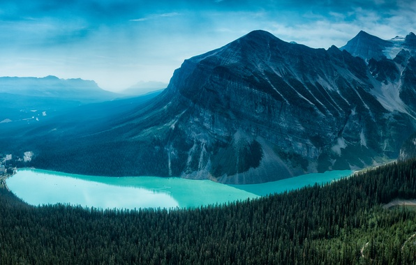 Picture forest, mountain, canada, alberta, lake louise