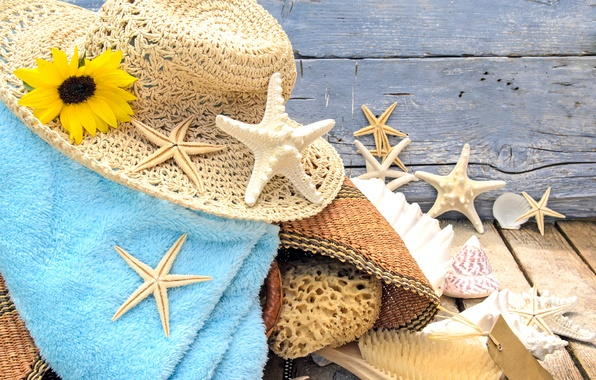 Picture sand, beach, stars, hat, shell, beach, wood, sand, accessories, seashells, starfishes