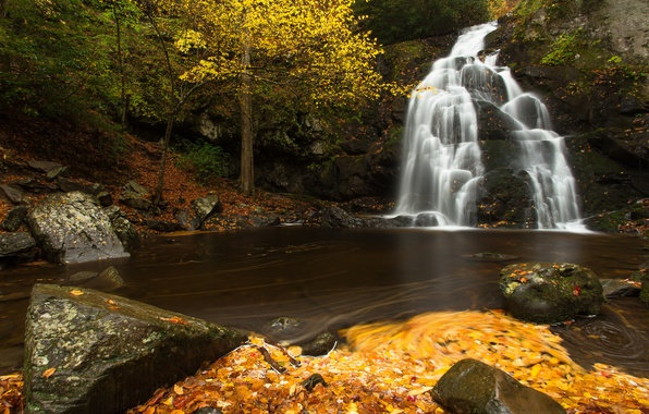 Picture autumn, leaves, river, stones, waterfall, cascade, Tennessee, Tn, Great Smoky Mountains National Park, Spruce Flats …