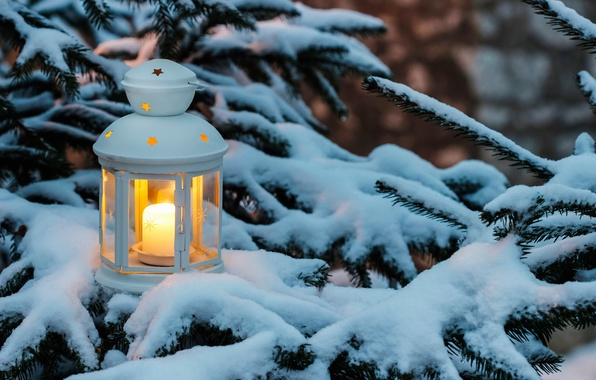 Wallpaper Winter Snow Holiday Branch Tree Candle