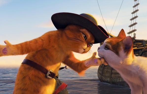 Picture cat, cat, cartoon, ship, cartoon, hat, promenade, Shrek, sword