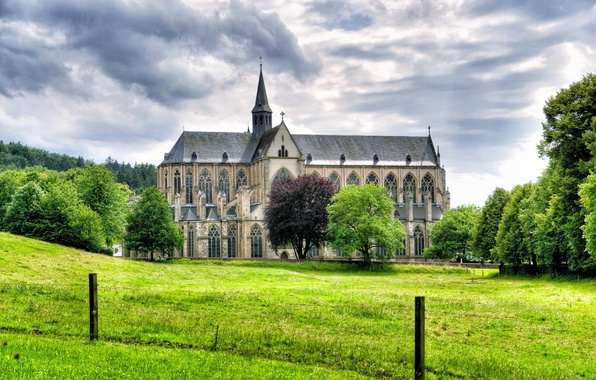Picture grass, trees, landscape, Germany, Cathedral, Germany, Altenberg, Altenberg